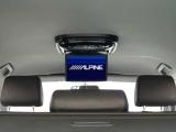 Монитор Alpine PKG 2100P